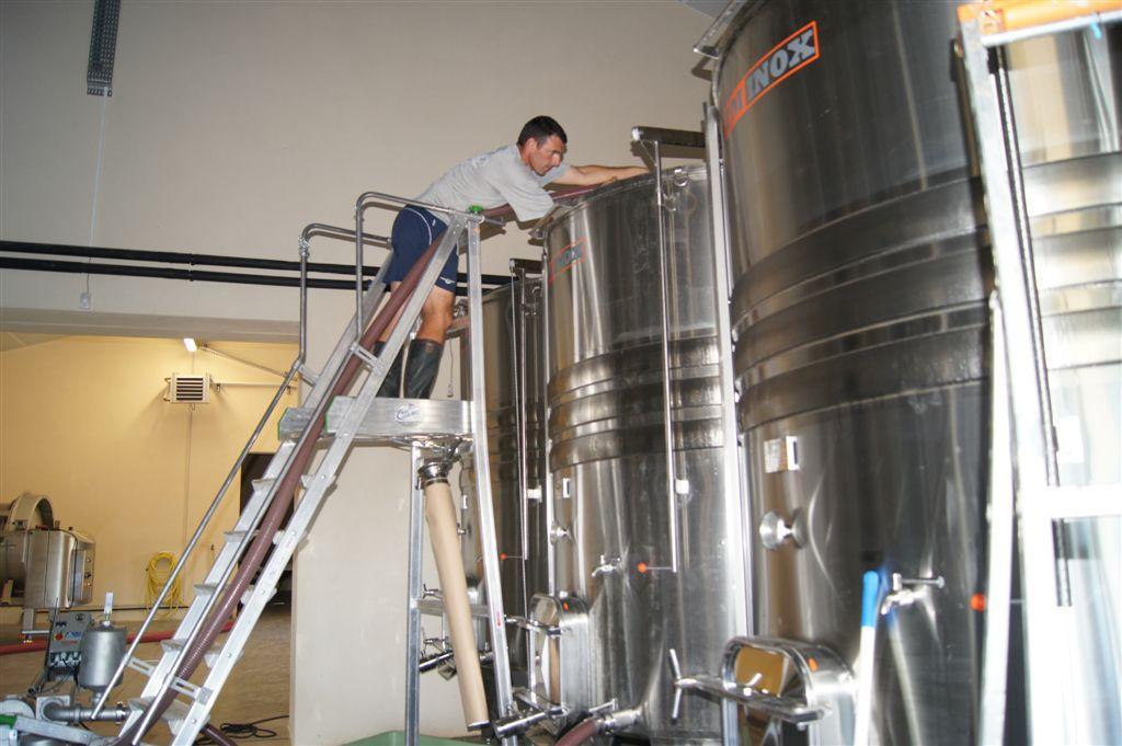 Sebastien working in the winery